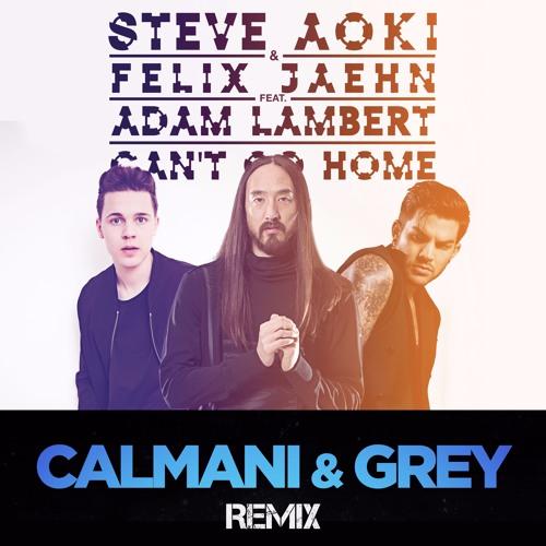 Steve Aoki & Felix Jaehn feat. Adam Lambert - Can't Go Home (Calmani & Grey Remix)